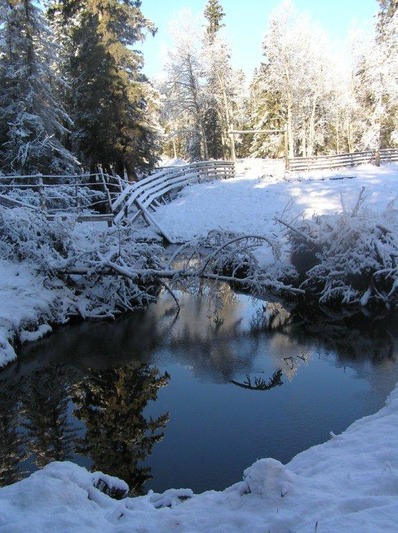 Reflections on the winter creek.